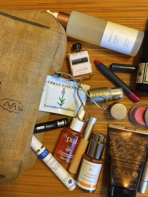 katey denno makeup bag